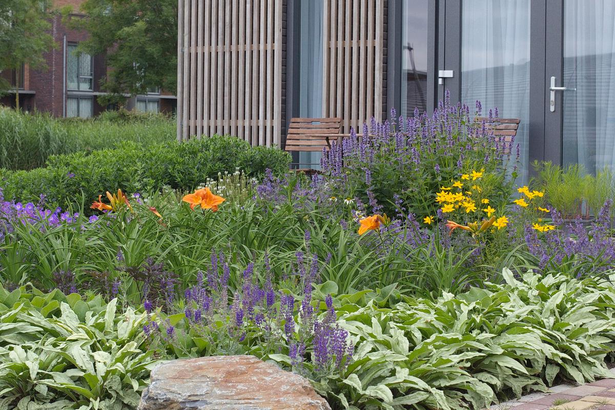 Hello Garden - particuliere tuin